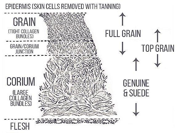 Da thuộc và phân biệt các dòng da thông thường