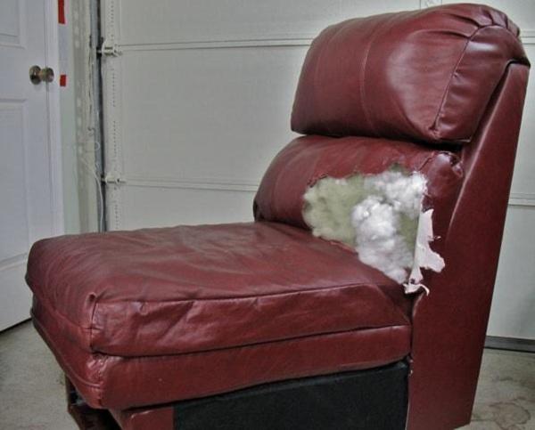 tư vấn chọn da thật bọc ghế sofa